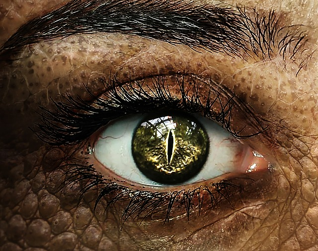 magické oko